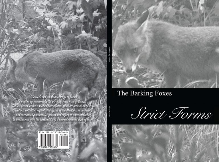 Strict Forms Anthology