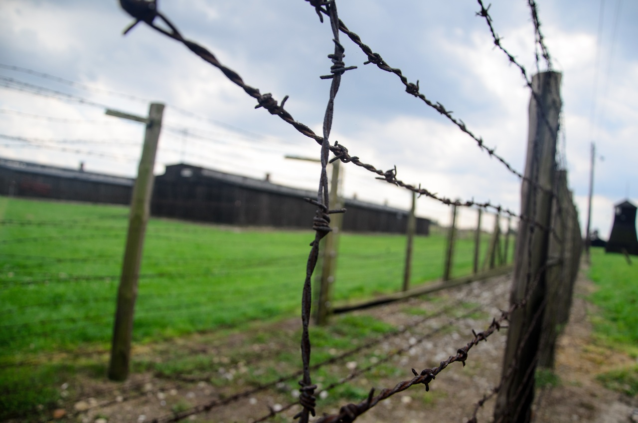 holocaust memorial day poem poetry write on showcase